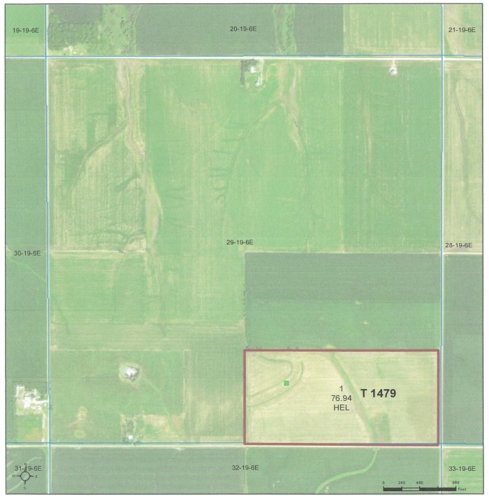 Maas Farm - 80 Acres